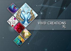 VIVID CREATION XL